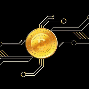 Are Bitcoin users finding more use in its tokenized form?