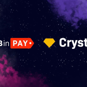 B2BinPay: Accepting Bitcoin and Other Crypto Payments Safely and Securely
