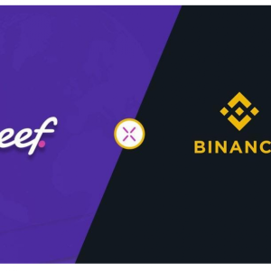 Binance Access x Reef – Creating a World-Class User Experience