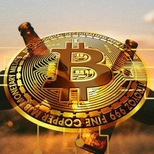 Merits of Bitcoin and its Functionality