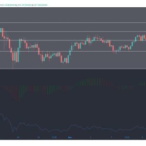 Bitcoin Cash, IOTA, análisis de precios del token de atención básica: 30 de octubre