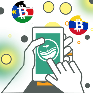 Bitcoin Cash Association to Fund Eatbch Charity in $1,000 BCH per Month