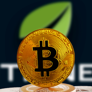 Bitfinex Must Face New York's Accusations Over the Loss of $850M in Co-Mingled Funds