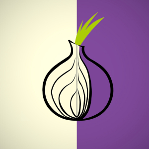 Bitcoin Users Leery of Tor: 23% of the Network's Exit Capacity Compromised
