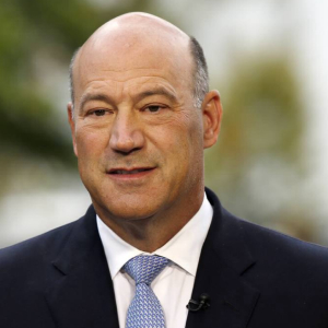 Former Trump Economic Advisor and Goldman Sachs President Gary Cohn Warns Bitcoin May Fail