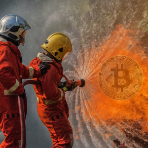 McAfee Catches Heat After Welshing On Famous Bitcoin Bet