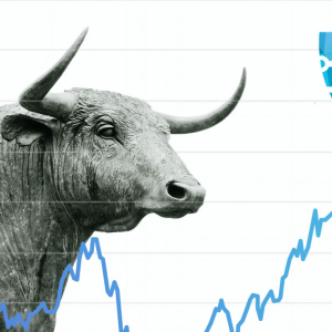 The New Bullrun Rushes Investors Towards Securypto