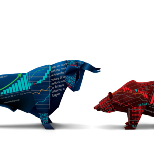 The Bull and Bear Case for Investing in the Top 20 Cryptocurrencies