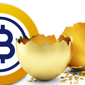 Bitcoin Gold 51% Attacked – Network Loses $70,000 in Double Spends