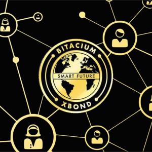 Bitacium Prepares for the Most Incredible Launch