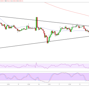 Bitcoin Price Analysis: BTC/USD Larger Bearish Pullback?