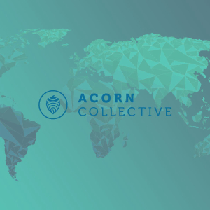 Access, Success, and Transparency: Introducing Acorn