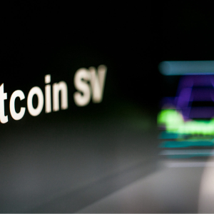 Bitcoin SV Hard Fork To 2 GB Blocks Will Force Centralization, Say Critics