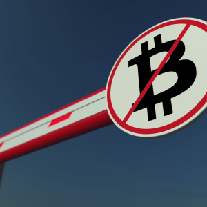 Bitcoin Could Be Stopped By Governments 'Pretty Simply'