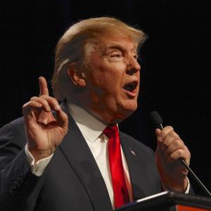 President Trump's Crypto Tweet 'Wildly Bullish' For Bitcoin