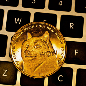 Such Currency, Much #Fail: Dogecoin Transactions 300% Higher Than Bitcoin Cash