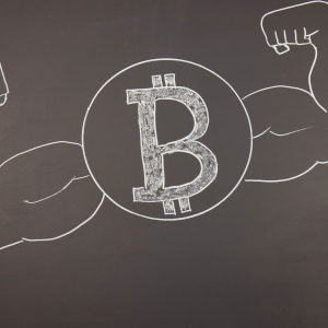 Bitcoin And Crypto Market Roundup For The Week Gone By