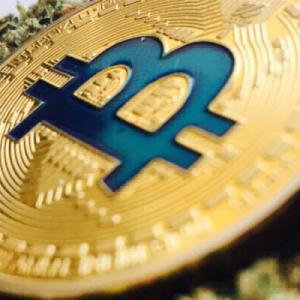 Tilray & Marijuana Stocks Smoke Cryptocurrency, Then Go Poof