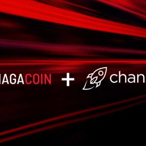 Changelly Lists NAGA Coin, Integrates Into NAGA Wallet