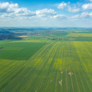 New Price Target: One Bitcoin Equates To 700 Acres Of Land