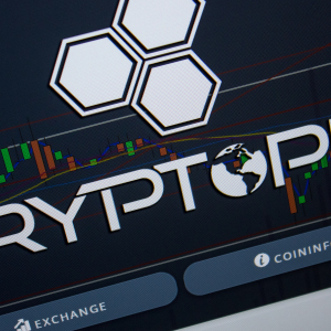 Cryptopia Liquidation: Hacked Bitcoin Exchange Didn't Use Individual Customer Wallets
