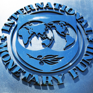 IMF Educates on Stablecoins, Is Government Adoption Possible?