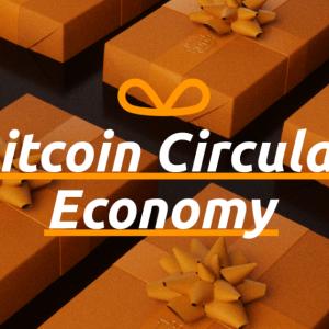 Celebrate Bitcoin Black Friday, Propel The Bitcoin Circular Economy