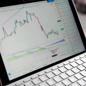 "TradingView: 30% of Audience ""Extremely Engaged"" With Crypto, As Popular As Forex"