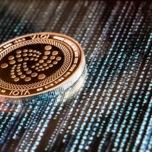 IOTA's November Hiring Spree Continues With Two New Hires