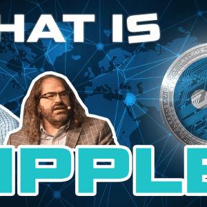 What Is Ripple? What Is XRP? Ultimate New Guide Based on Extensive Research