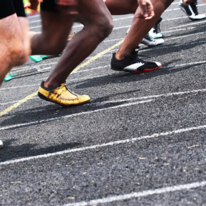 Paxos Standard Emerges as Early Leader in Stablecoin Sprint