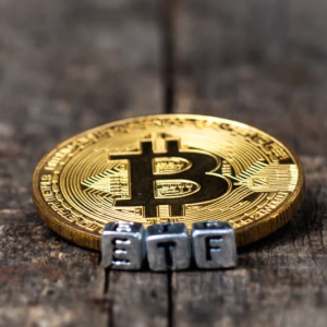 Bitcoin ETF Can Bolster US Economy for Next Decade: VanEck