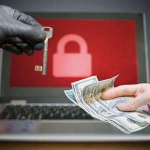 Dutch Bitcoin Ransom DDoS Hacker Gets No Additional Jail Time