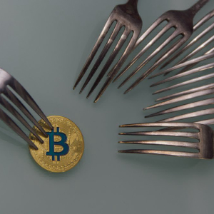 Bitcoin Cash: Where the 4th-Largest Cryptocurrency Stands the Day after the Fork