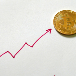 Bitcoin Price's Sub-$11,000 Drop Isn't Spooking Bullish Long-Term Traders