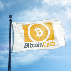 (+) Is Manipulation Behind Bitcoin Cash's Absurd Rally?
