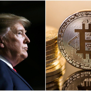 Economist Speculates Absurd but Feasible Trump Bitcoin Ban