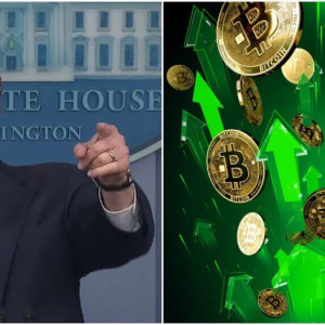 The Bitcoin Price Surged Because Mnuchin Made This Crucial Remark