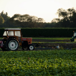 People's Daily: Smart Agriculture will Trigger Technological Innovations of Blockchain