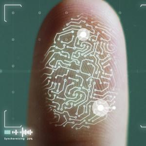 Dapp Platform NEAR Protocol Taps Ontology's Expertise for Decentralized Identity Effort