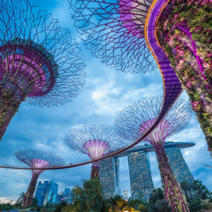 Singapore to Speed Up Process of Awarding Blockchain Payment Patents