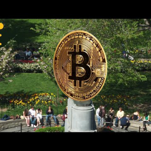 Satoshi Square: How Bitcoin Took Over a Park (And Then the World)