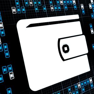 US Homeland Security Challenges Freelancers to Design It a Digital Wallet