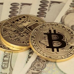 Coincheck Owner Monex Plans Proprietary Blockchain, ICO
