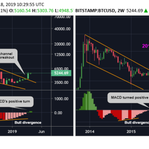 Bitcoin Price Indicator Turns Bullish in First Since Early 2018