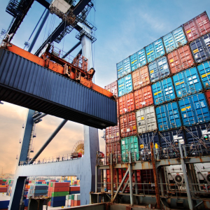 TradeLens to Digitize India's Largest Private Port Operator