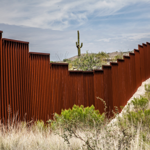 US Lawmaker Suggests 'WallCoin' Crypto to Fund Trump's Mexico Border Wall