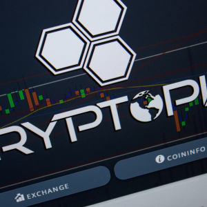 The Cryptopia Hackers Are Moving Funds Into at Least Four Wallets