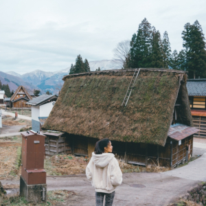 Securitize Launches Tokenized Platform to Revitalize Japan's Rural Property Market
