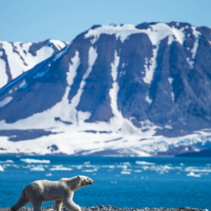 GitHub Is Burying Bitcoin Code Inside an Arctic Mountain to Ride Out the Next 1,000 Years